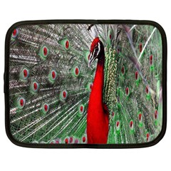 Red Peacock Netbook Case (large)