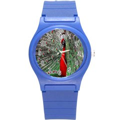 Red Peacock Round Plastic Sport Watch (S)