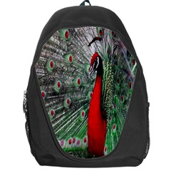 Red Peacock Backpack Bag