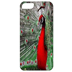 Red Peacock Apple Iphone 5 Classic Hardshell Case