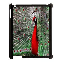 Red Peacock Apple iPad 3/4 Case (Black)