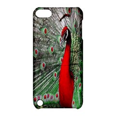 Red Peacock Apple iPod Touch 5 Hardshell Case with Stand