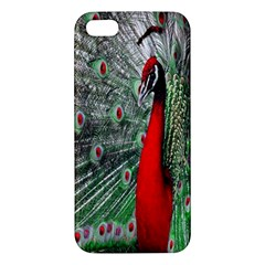 Red Peacock Apple iPhone 5 Premium Hardshell Case