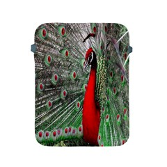Red Peacock Apple iPad 2/3/4 Protective Soft Cases