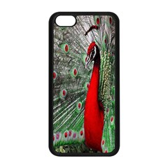 Red Peacock Apple iPhone 5C Seamless Case (Black)