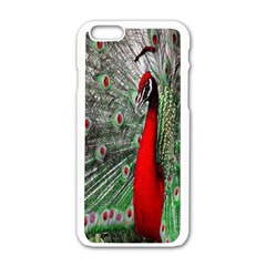 Red Peacock Apple Iphone 6/6s White Enamel Case