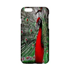 Red Peacock Apple Iphone 6/6s Hardshell Case