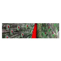Red Peacock Satin Scarf (oblong)