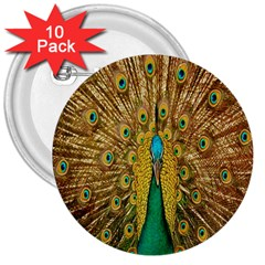Peacock Bird Feathers 3  Buttons (10 Pack)