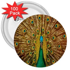 Peacock Bird Feathers 3  Buttons (100 pack)