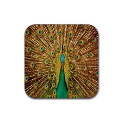 Peacock Bird Feathers Rubber Square Coaster (4 pack)