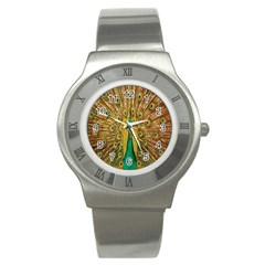 Peacock Bird Feathers Stainless Steel Watch