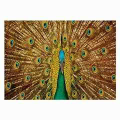 Peacock Bird Feathers Large Glasses Cloth