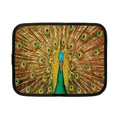 Peacock Bird Feathers Netbook Case (small)