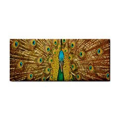 Peacock Bird Feathers Cosmetic Storage Cases