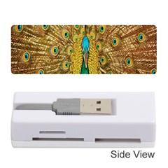 Peacock Bird Feathers Memory Card Reader (stick)