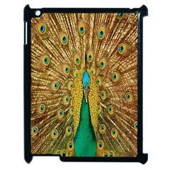 Peacock Bird Feathers Apple iPad 2 Case (Black)