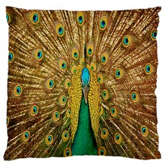 Peacock Bird Feathers Large Cushion Case (Two Sides)