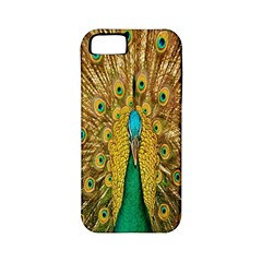 Peacock Bird Feathers Apple iPhone 5 Classic Hardshell Case (PC+Silicone)