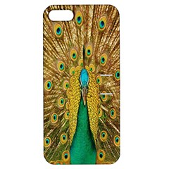 Peacock Bird Feathers Apple iPhone 5 Hardshell Case with Stand