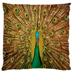 Peacock Bird Feathers Large Flano Cushion Case (two Sides)