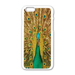 Peacock Bird Feathers Apple iPhone 6/6S White Enamel Case
