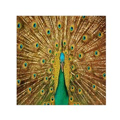 Peacock Bird Feathers Small Satin Scarf (Square)