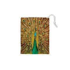 Peacock Bird Feathers Drawstring Pouches (xs)
