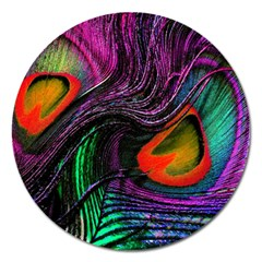 Peacock Feather Rainbow Magnet 5  (round)