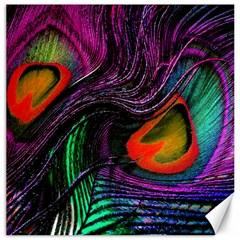 Peacock Feather Rainbow Canvas 16  X 16