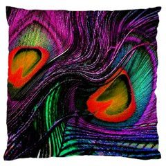 Peacock Feather Rainbow Large Flano Cushion Case (One Side)