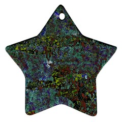 Stone Paints Texture Pattern Ornament (star)
