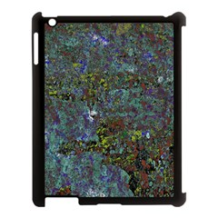 Stone Paints Texture Pattern Apple Ipad 3/4 Case (black)