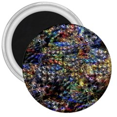 Multi Color Peacock Feathers 3  Magnets