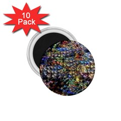 Multi Color Peacock Feathers 1 75  Magnets (10 Pack)