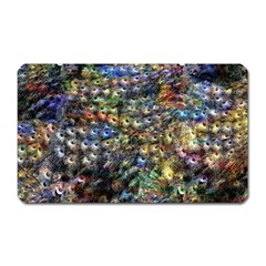 Multi Color Peacock Feathers Magnet (Rectangular)