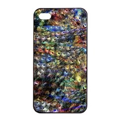 Multi Color Peacock Feathers Apple iPhone 4/4s Seamless Case (Black)