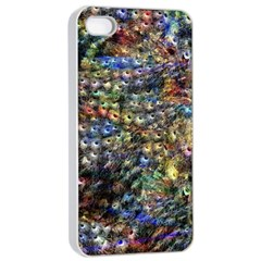 Multi Color Peacock Feathers Apple iPhone 4/4s Seamless Case (White)