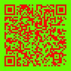 Colorful Qr Code Digital Computer Graphic Canvas 16  X 16