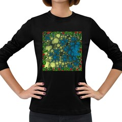 Holly Frame With Stone Fractal Background Women s Long Sleeve Dark T Shirts