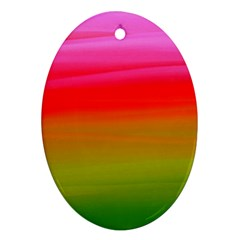 Watercolour Abstract Paint Digitally Painted Background Texture Oval Ornament (Two Sides)