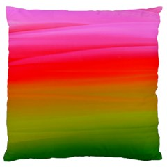 Watercolour Abstract Paint Digitally Painted Background Texture Large Flano Cushion Case (Two Sides)