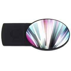 Flower Petals Abstract Background Wallpaper USB Flash Drive Oval (4 GB)