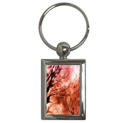 Fire In The Forest Artistic Reproduction Of A Forest Photo Key Chains (Rectangle)