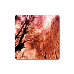 Fire In The Forest Artistic Reproduction Of A Forest Photo Square Magnet