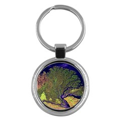 Lena River Delta A Photo Of A Colorful River Delta Taken From A Satellite Key Chains (round)