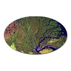 Lena River Delta A Photo Of A Colorful River Delta Taken From A Satellite Oval Magnet