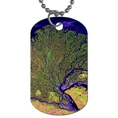 Lena River Delta A Photo Of A Colorful River Delta Taken From A Satellite Dog Tag (Two Sides)