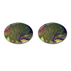 Lena River Delta A Photo Of A Colorful River Delta Taken From A Satellite Cufflinks (oval)