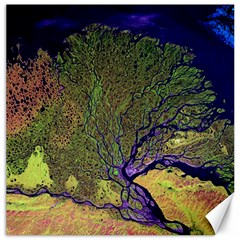 Lena River Delta A Photo Of A Colorful River Delta Taken From A Satellite Canvas 16  X 16